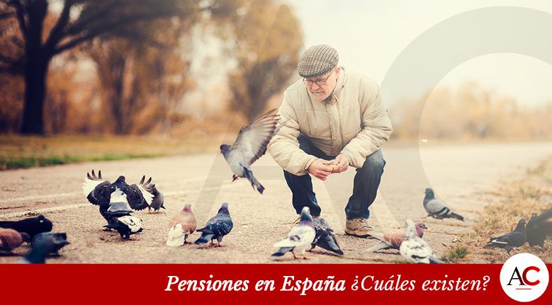 Pensiones en España ¿Cuáles existen?