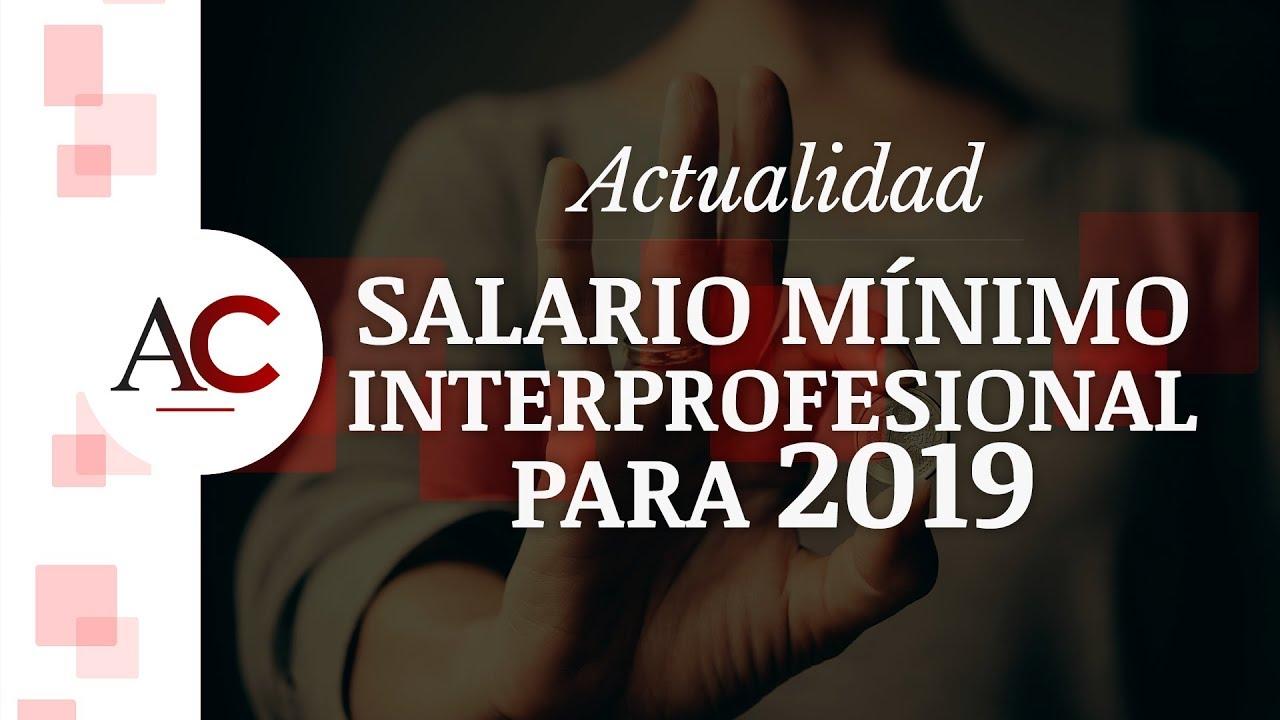 Salario Mínimo Interprofesional para 2019 en España
